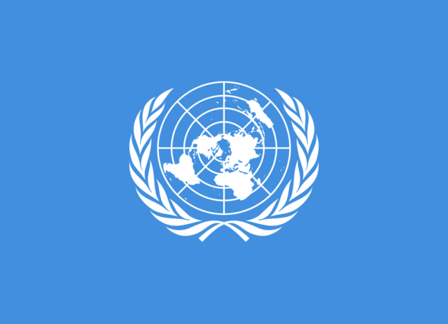 Apply for the United Nations Young Professionals Programme